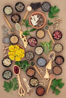 Canvas print Herbs for Womens Health