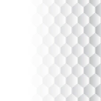 Canvas print Hexagonal mosaic