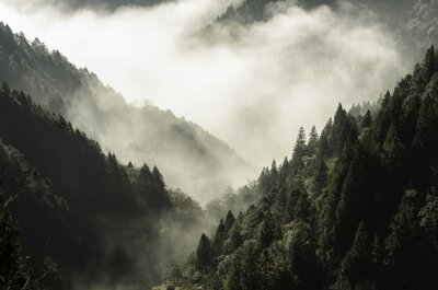 Canvas print High mountain in mist and cloud