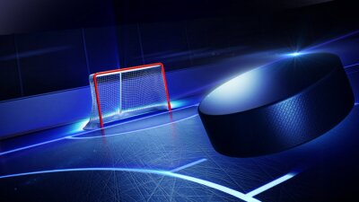 Canvas print Hockey ice rink and goal