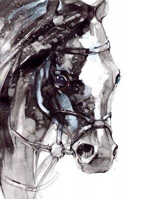Canvas print horse