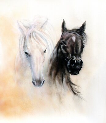 Canvas print Horse heads, two black and white horse spirits, beautiful detail