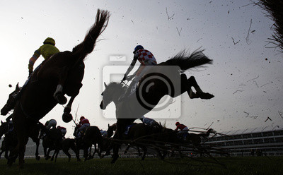 Canvas print Horse Racing jumping fence