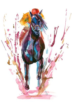 Canvas print horseman
