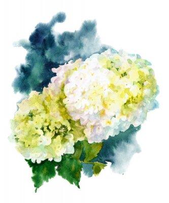 Canvas print hydrangea