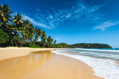 Canvas print Idyllic beach. Sri Lanka