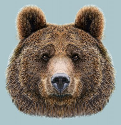 Canvas print Illustrated Portrait of Bear on blue background