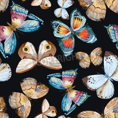 Canvas print illustrated watercolor  butterflies