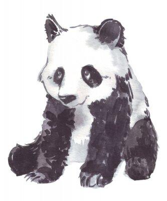 Canvas print illustration drawing of a panda
