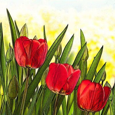Canvas print illustration of red tulips