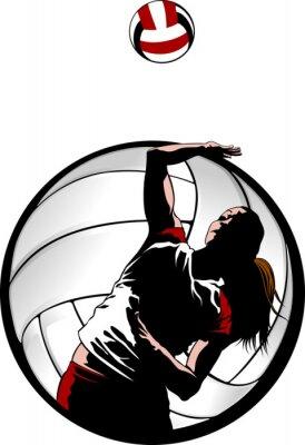 Canvas print Indoor Volleyball Closeup