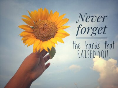 Canvas print Inspirational motivational quote - Never forget the hands that raised you. With background of blue sky and beautiful sunflower blossom in hand. Photo concept with nature.