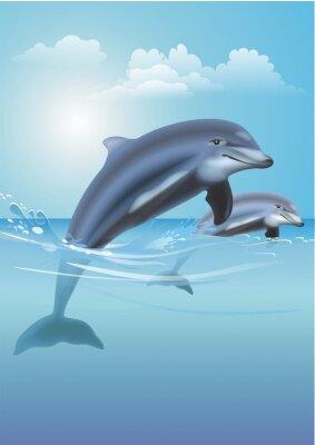 Canvas print Jumping Dolphins Illustration