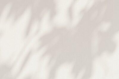 Canvas print Leaf shadows on a cement background illustration