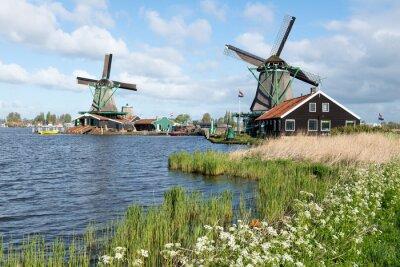 Canvas print Les moulins de Zaanse Schans en Hollande