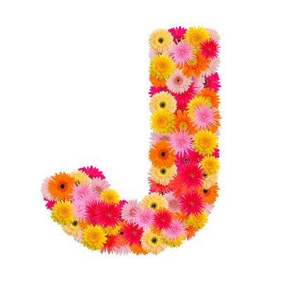 Canvas print Letter J alphabet with gerbera  isolated on white background