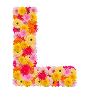 Canvas print Letter L alphabet with gerbera  isolated on white background