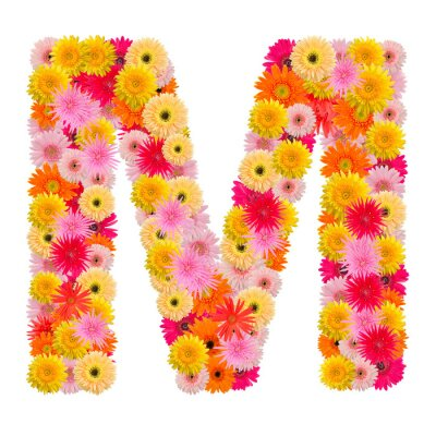 Canvas print Letter M alphabet with gerbera  isolated on white background