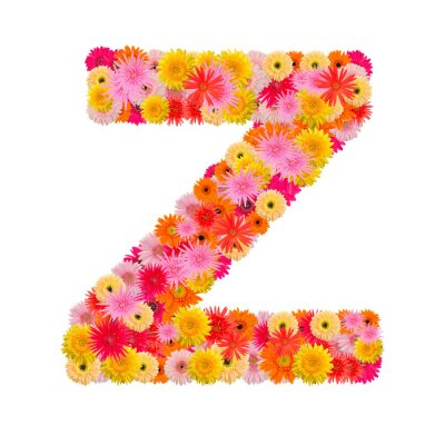 Canvas print Letter Z alphabet with gerbera  isolated on white background
