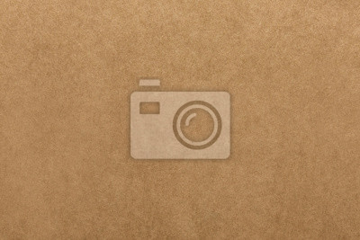 Canvas print Light brown kraft paper texture for background