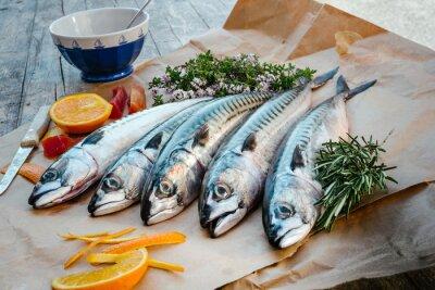 Canvas print mackerels