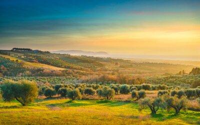 Canvas print Maremma sunset panorama. Countryside, sea and Elba on horizon. San Vincenzo, Tuscany, Italy.