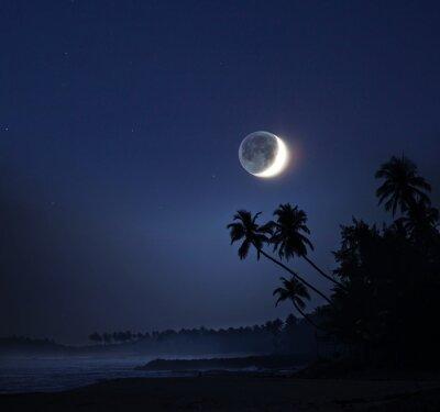 Canvas print Moonlight