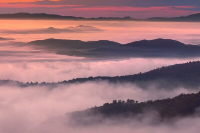 Canvas print Morning scenery in mountain misty ambiance
