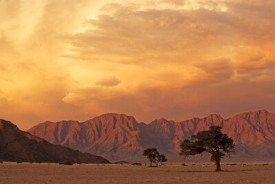 Namib desert landscape at sunset with rugged mountains and dramatic clouds, Namibia.