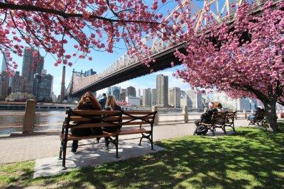 Canvas print New York City / Roosevelt Island