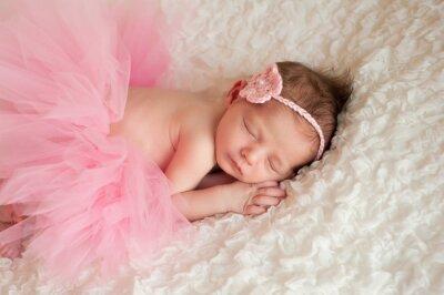 Canvas print Newborn Baby Girl Wearing a Pink Tutu