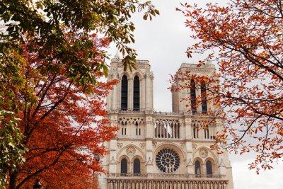 Canvas print Notre Dame, Paris