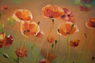 Canvas print Oil  painting red poppy  flowers.  Spring  floral nature background