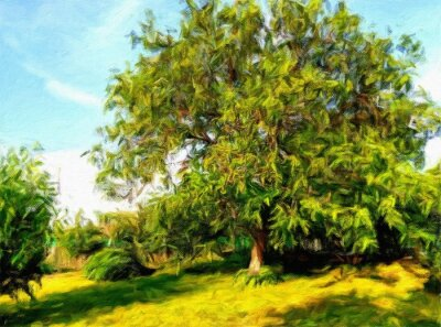 Oil paintings summer landscape, tree in the park