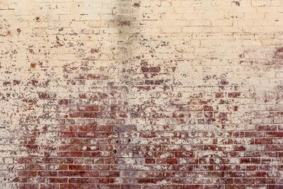 Canvas print Old brick wall in a background