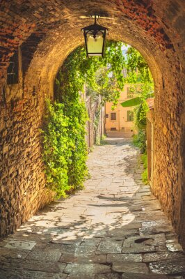 Canvas print Old streets of greenery a medieval Tuscan town.