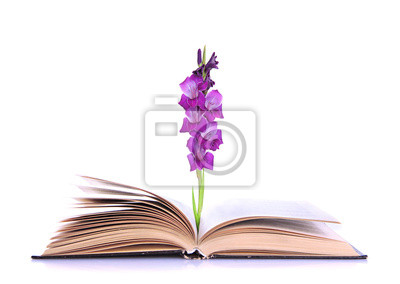 Open book with  gladiolus flower isolated on white