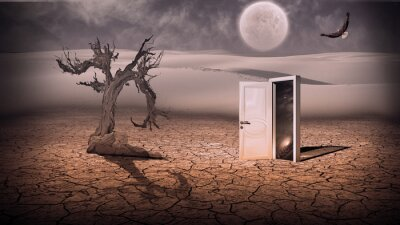 Canvas print Open doorway show a somehow semitransparent space scene in stran