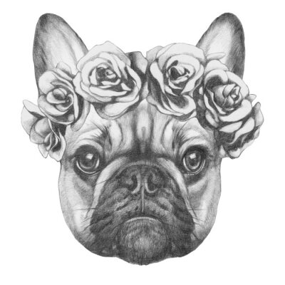 Canvas print Original drawing of French Bulldog with roses. Isolated on white background