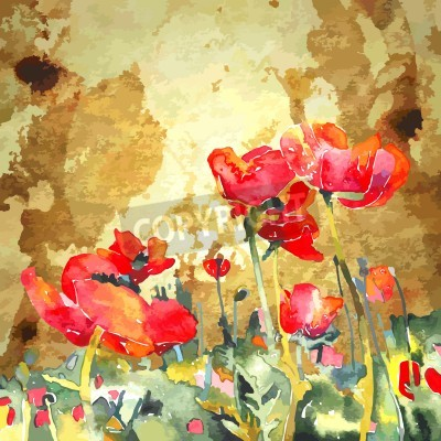 Canvas print original watercolor poppy flower in gold background