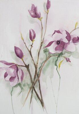 Canvas print Original watercolour, magnolia flowers.