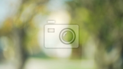 Out of focus background plate of suburban trees blowing in wind