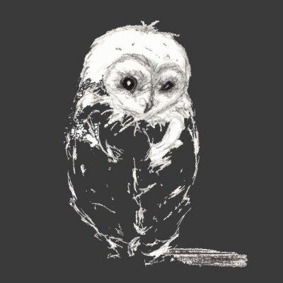 Canvas print Owl