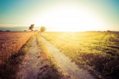 Canvas print Paesaggio di campagna e campi di grano al tramonto