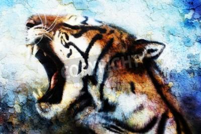 Canvas print painting Sumatran Tiger Roaring