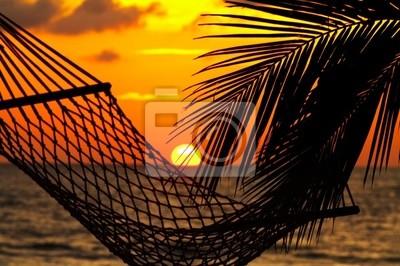 palm, hammock and sunset
