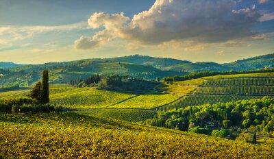Canvas print Panzano in Chianti vineyard and panorama at sunset. Tuscany, Italy