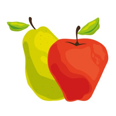 pear and apple healthy fruit vector illustration design