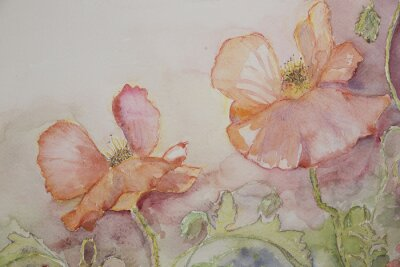 Canvas print Pink and orange poppies.