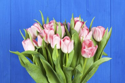 Canvas print Pink tulips bouquet closeup